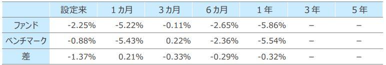SBI・全世界株式インデックス・ファンド(雪だるま)